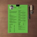 Simple Elegant Resume