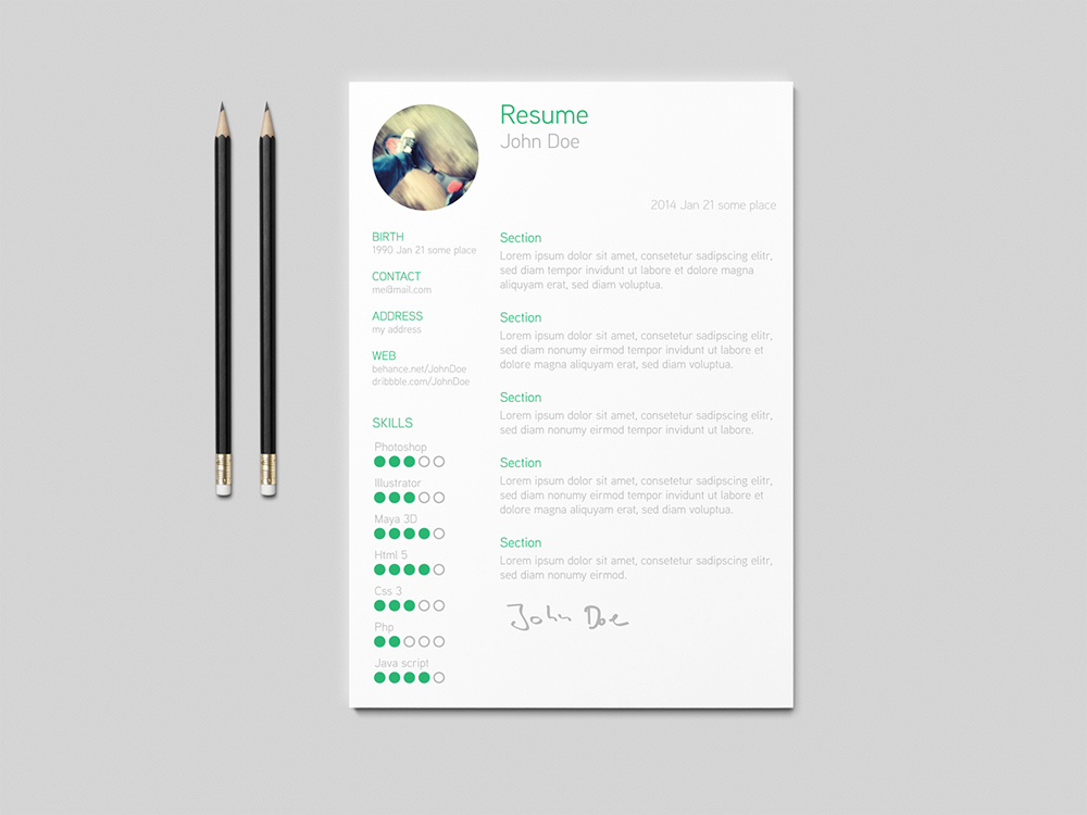 roedaer resume free simple and clean resume template - Clean Resume Template