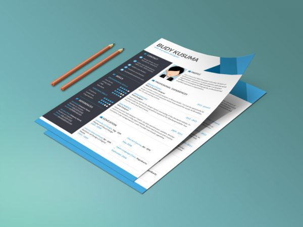 Flasher Resume - Free clean and modern Resume Template with Three Colors Option