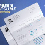 Beautiful Infographic Resume