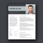 Bold Elegant Resume