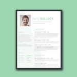 Conservative Resume Template