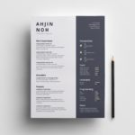 Minimal Indesign Resume