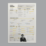 Stylish Infographic Resume