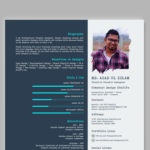 Visual Typographic Resume