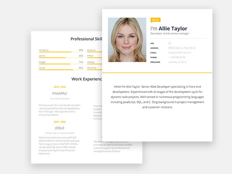 Allie Taylor Free Word Resume Template With Modern Look