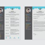 Macintoch Resume