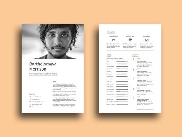 Free Designer Resume Template with Impressive Design