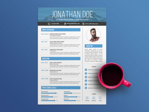 Free Creative Professional CV Template for Job Seeker