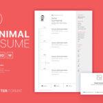 Clean Minimal Curriculum Vitae