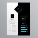 Attractive Infographic Resume