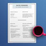 Minimal Scholarship Resume
